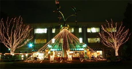 上野公園のクリスマスイルミネーション