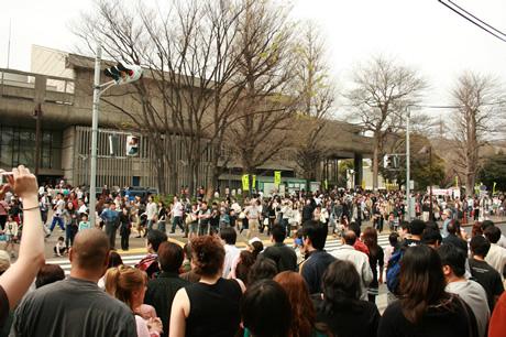 桜吹雪も見れた上野公園は激混み!!ホント?ウソ?