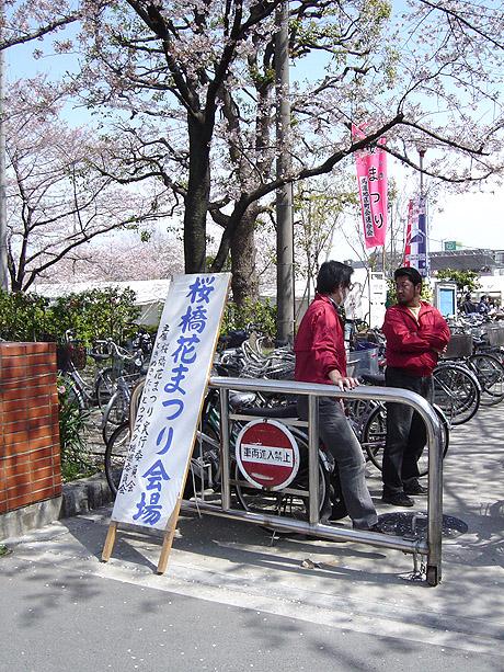 4/5 隅田公園と桜橋花まつり!