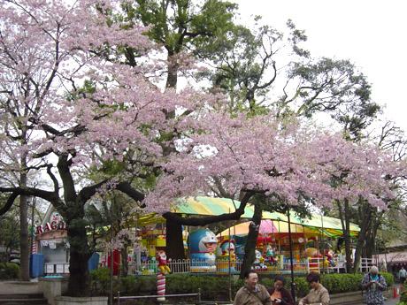 4/7 花見を終えた 上野公園では…