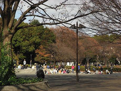 すっかり冬模様な上野公園