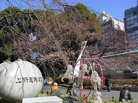 上野公園の桜と展覧会のチケットプレゼント