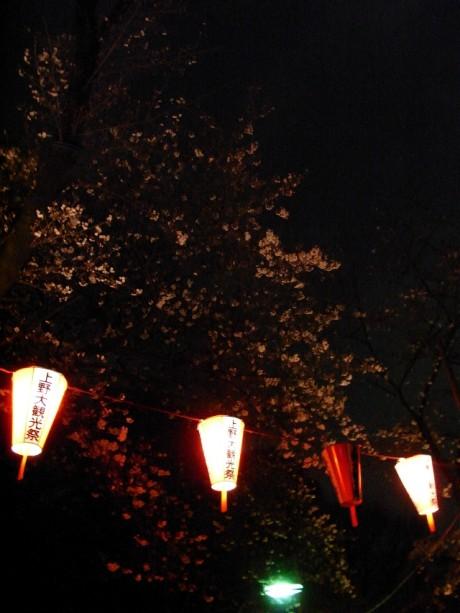 上野公園の夜桜 – 3月28日(土)