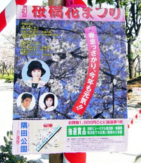 快晴の隅田公園!桜の開花はなかなか…