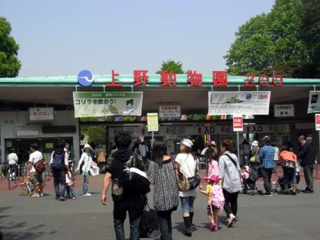 5月2日(土)やっぱりGWは混んでいる!上野動物園