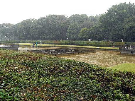 台風がくるよ!上野公園の今!