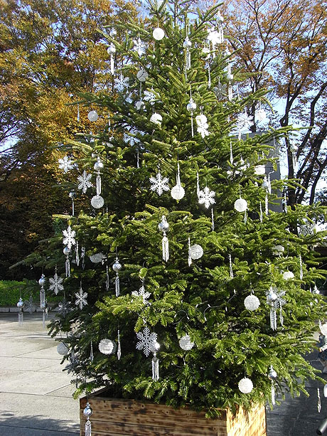 国立西洋美術館で準備されていた クリスマスイルミネーション