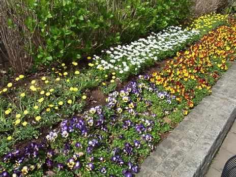 春分の日の上野公園