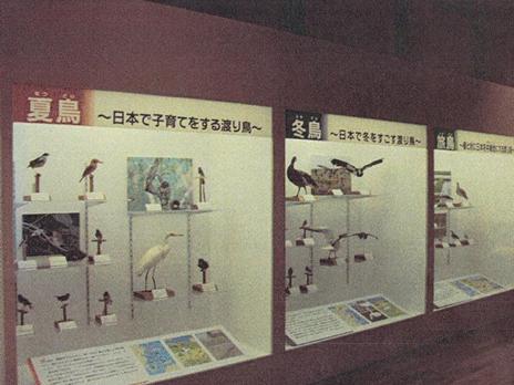 上野動物園 企画展「旅する鳥たち」 他