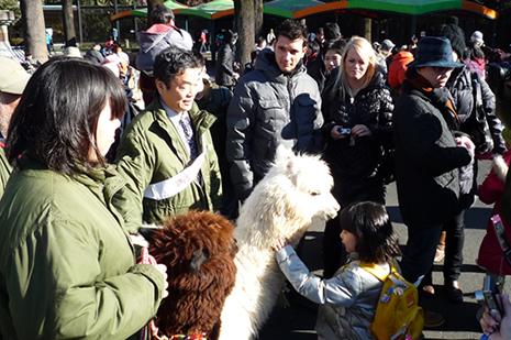 あけましておめでとう!上野動物園で楽しいお正月!