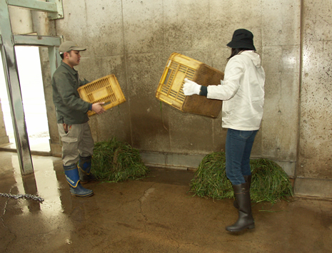 上野動物園 「大人のための1日飼育体験」参加者募集
