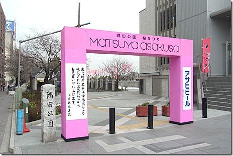 隅田公園花まつりも中止・・・