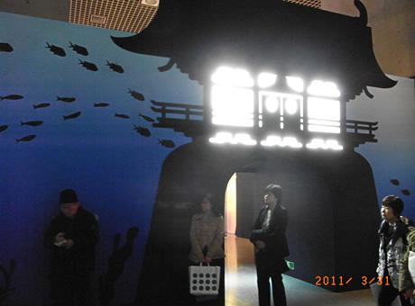 宝石サンゴ展に行ってきました!国立科学博物館