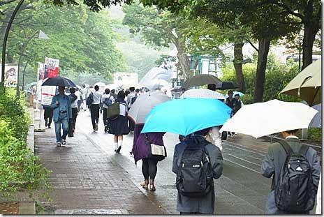 雨の上野公園 美術館博物館の混雑は? 2011/6/2