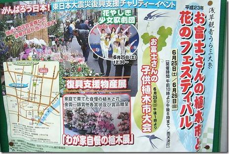 お富士さんの植木市と花のフェスティバル【2011/6/25・26】