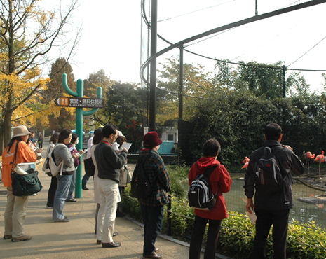 上野動物園 大人のための講座「上野動物園の歩き方」参加者募集!