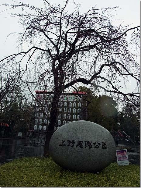 さよなら三月また来て四月? 上野公園にて