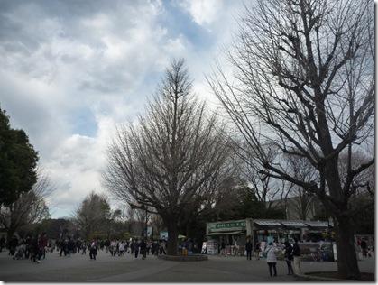 日曜日の上野公園の様子は?