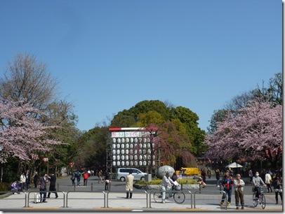 春休み真っ只中! 上野公園の様子