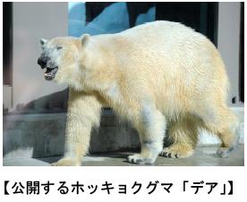 上野動物園 ホッキョクグマを公開します/マレーグマの赤ちゃんを公開します