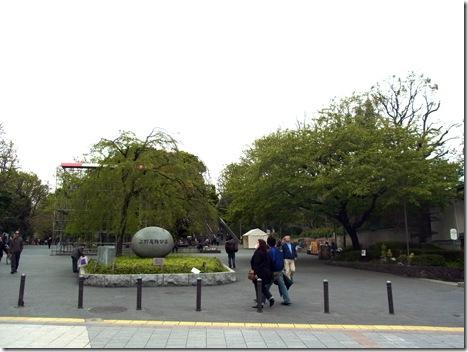 4/16(月)上野公園桜の状況