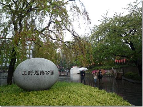 4月14日上野桜探検隊(染井吉野 葉桜率8割)