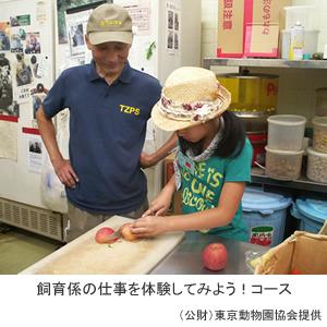 上野動物園 サマースクール参加者募集!/「動物愛護標語」を募集します