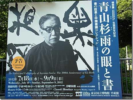 青山杉雨の眼と書【2012.07.18.水~2012.09.09.日】