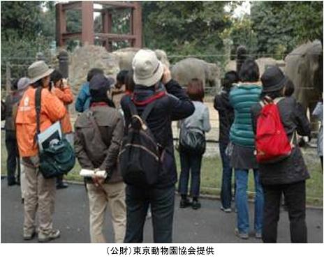 上野動物園 大人のための動物園 参加者募集/パンダの日 トーク&クイズ