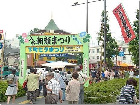 入谷朝顔祭り(朝顔市)【2013年7月6日(土)、7日(日)、8日(月)】