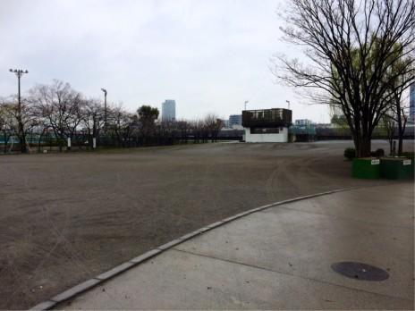 また寒くなり開花遅れたかな!? 隅田公園
