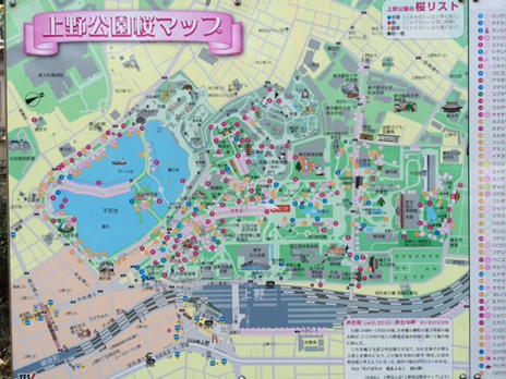 平日なのに混んでます 上野公園