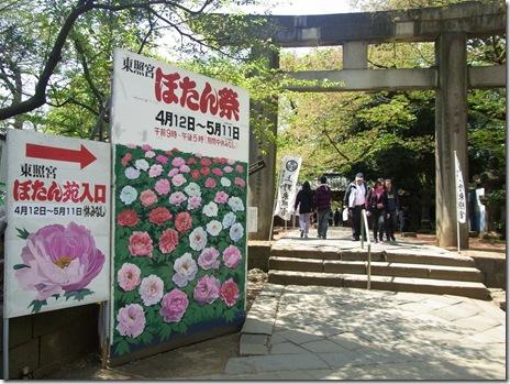 春のぼたん祭り【平成26年4月12日~5月11日】