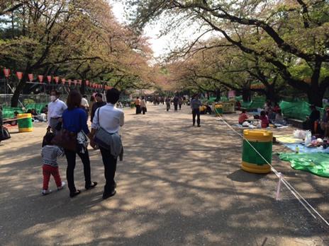ジャック・カロ展が始まりました  上野公園 美術館・博物館 混雑情報他