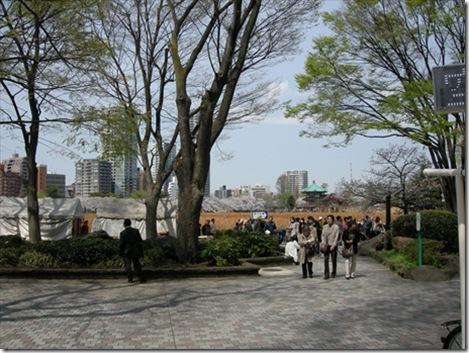 4/1桜…満開 上野公園不忍池