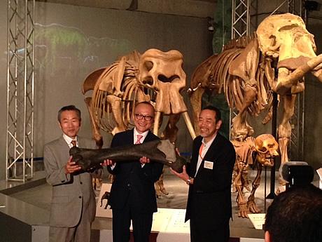 この夏行こう!「太古の哺乳類展」国立科学博物館(上野公園)