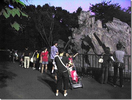 真夏の夜の動物園 2014年8月9日(土)~8月17日(日)上野動物園
