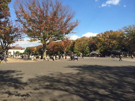 東京国立博物館『日本国宝展』は混雑必至!  上野公園 美術館・博物館 混雑情報他