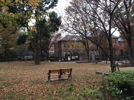 東京国立博物館『東アジアの華 陶磁名品展』が終了間近!  上野公園 美術館・博物館 混雑情報他