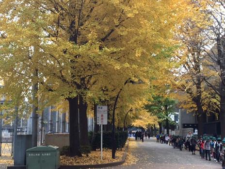 東京国立博物館『日本国宝展』が12/7まで!  上野公園 美術館・博物館 混雑情報他