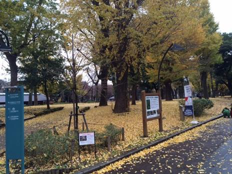 東京都美術館『ウフィツィ美術館展』が12/14で終了!  上野公園 美術館・博物館 混雑情報他