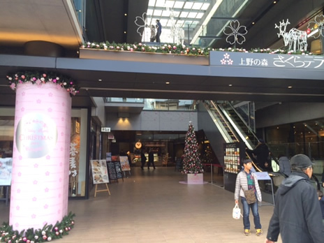 年末の上野公園は・・・  上野公園 美術館・博物館 混雑情報他