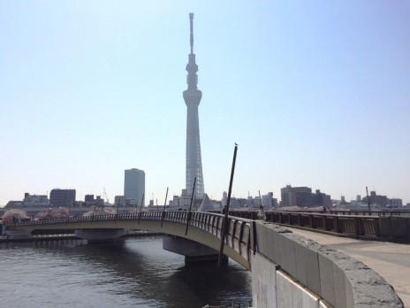 3月30日 お花見日和の隅田公園