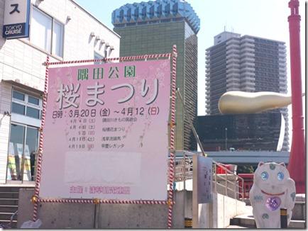 3月26日 まだまだつぼみ状態 隅田公園
