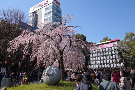 東京都美術館『新印象派―光と色のドラマ』展が3/29(日)で終了します!  上野公園 美術館・博物館 混雑情報他