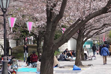3月28日 ぽかぽか陽気の隅田川 隅田公園