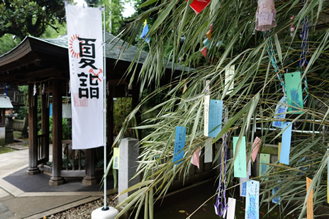 国立科学博物館『生命大躍進 脊椎動物のたどった道』が7/7(火)より開催!上野公園 美術館・博物館 混雑情報他