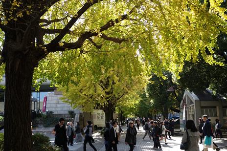 上野の森美術館にて明日より『肉筆浮世絵ー美の競艶』展が開催中!上野公園 美術館・博物館 混雑情報他