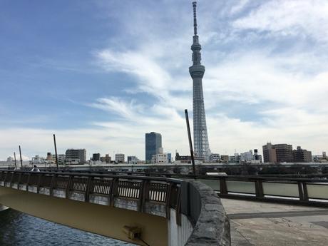 3月18日(金) 隅田公園はこんな感じ♪