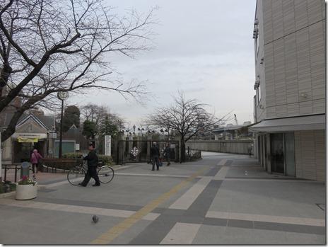 3月16日(水)隅田公園はまだまだ。